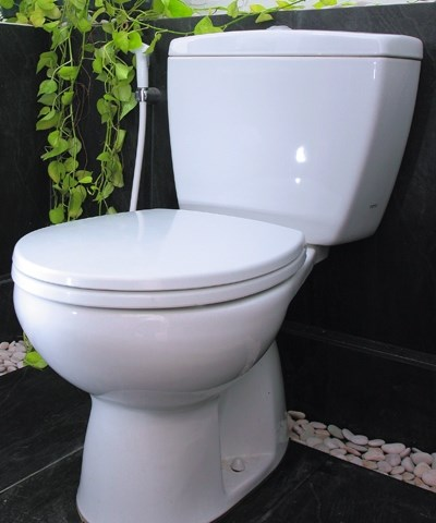 Choose a Convenient Toilet - Water Closet