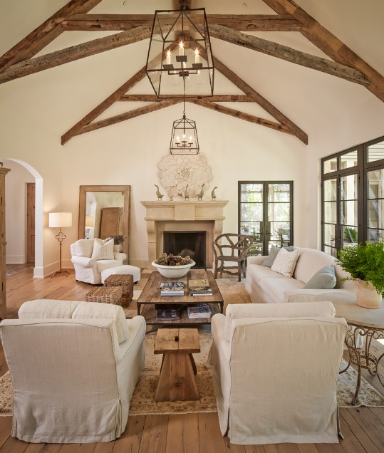 Shasta traditional living room - houston