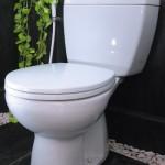 Choose a Convenient Toilet